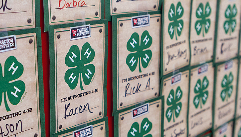 4-H and Tractor Supply Campaign